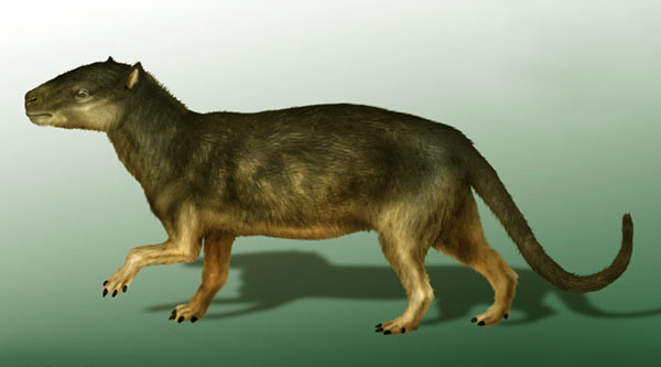 Who was top predator after T. rex? Dinosaurs T Rex