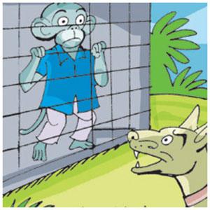 Jack entered the kennel and the dog started barking
