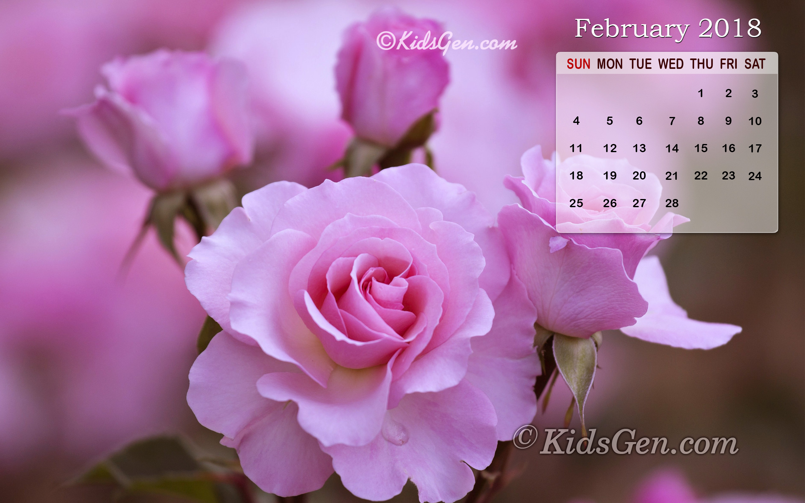 Calendar Wallpaper Of February 2018 Themed With Pink Roses
