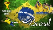 Brazil 2014 World Cup Team