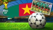 Cameroon 2014 World Cup T…