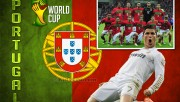 Portugal 2014 World Cup T…