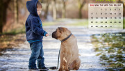 May Calendar Wallpaper - …